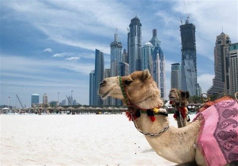 ظهور عمان و سقوط امارات