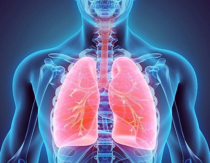 این مواد خوراکی را برای تقویت ریه هایتان بخورید
