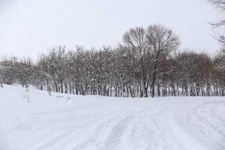 بارش برف در 13 استان ، کوهنوردی نکنید