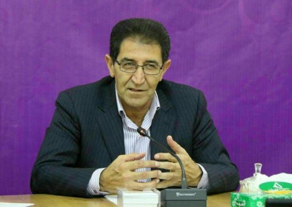 خبرنگاران معاون استاندار: توفیقات انقلاب در حوزه عمرانی لرستان چشمگیر است