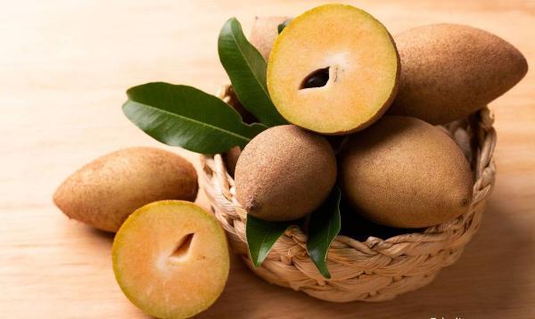 با میوه خوش طعم چیکو یا ساپودیلا و خواص آن آشنا شوید