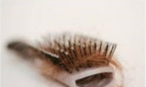 با آزمایشی ساده، نوع موهای خود را معین نمائید